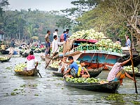 Backwater & Bagerhat Tour in Bangladesh