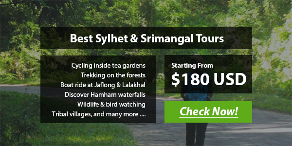 Sylhet & Srimangal tour packages