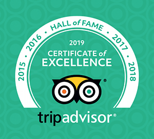 TripAdvisor Certificate of Excellence Hall of Fame 2019 Award